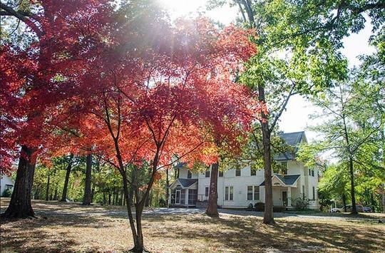 Lạc lối trong khuôn viên trường đại học rộng nhất thế giới - Ảnh 20.