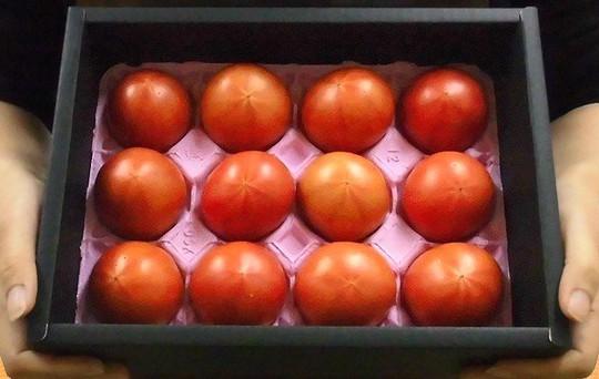 Cà chua Hoàng gia Nhật 1,6 triệu đồng/kg - Ảnh 3.