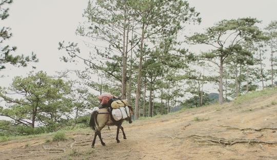 Đưa nhau đi trốn ở rừng Tà Năng- Phan Dũng - Ảnh 3.