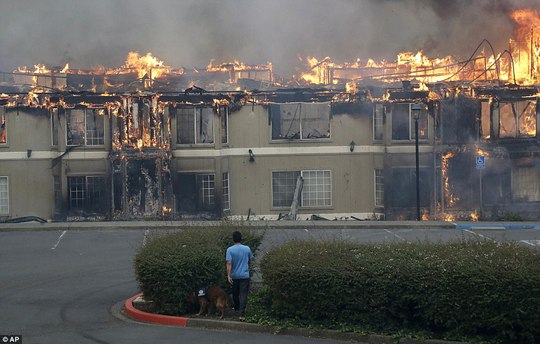Cháy rừng ở California dữ dội nhất trong lich sử - Ảnh 4.