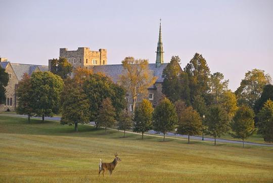 Lạc lối trong khuôn viên trường đại học rộng nhất thế giới - Ảnh 5.