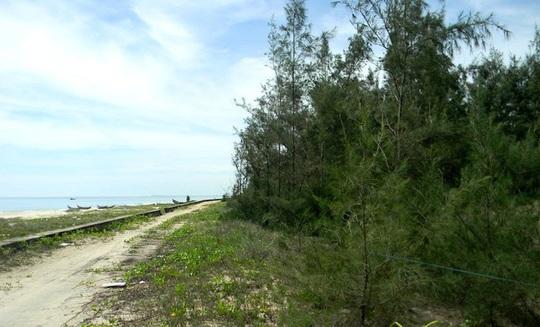 Đại gia bí ẩn buông chục tỉ mua đất ven biển Tam Kỳ - Ảnh 5.