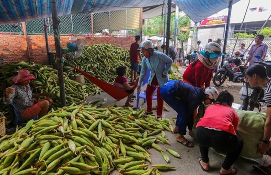 Chợ bắp lớn nhất Sài Gòn - Ảnh 5.