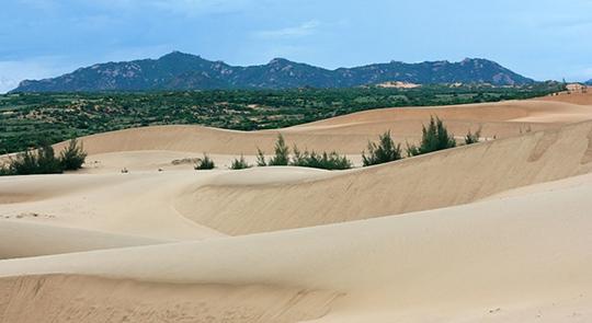 Bạn nên đến Ninh Thuận vào mùa hè này! - Ảnh 14.