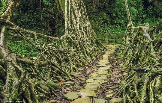 Những kỳ quan thiên nhiên đáng kinh ngạc nhất thế giới - Ảnh 6.