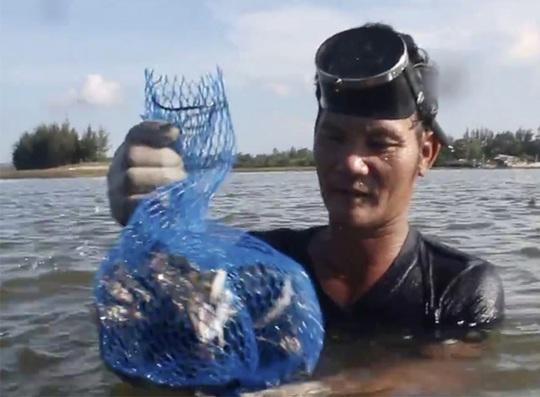 Săn hàu trên sông Trà Bồng - Ảnh 2.