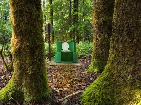 Kinh ngạc với 16 nhà vệ sinh có thiết kế ấn tượng nhất trên thế giới - Ảnh 6.