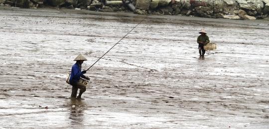 Nghề câu cá lác phụ thuộc vào thời tiết và thuỷ triều. Hôm nào may mắn, ông Bẩy có thể câu được 3 đến 4 kg cá; giá cá lác tại thị trường Hải Phòng khoảng 250.000 đồng mỗi kg.