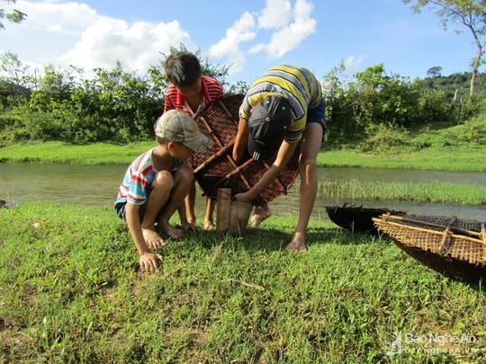 Chiêu độc săn cá suối của trẻ em vùng cao Nghệ An - Ảnh 7.