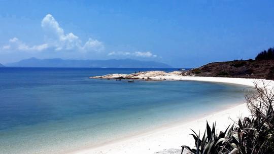 Trải nghiệm cuộc sống hoang dã trên đảo Cù Lao Câu - Ảnh 8.