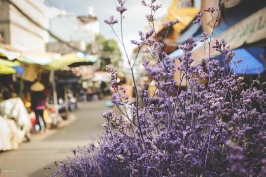 Sắc màu bình dị tại chợ hoa lớn nhất Sài Gòn - Ảnh 9.