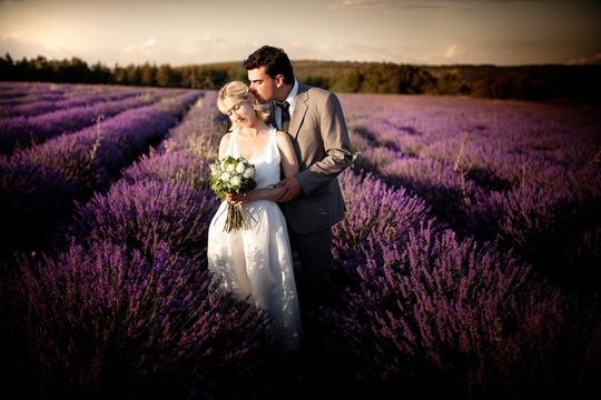 Thiên đường oải hương tràn sắc tím giữa lòng Provence - Ảnh 10.