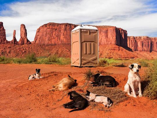 Kinh ngạc với 16 nhà vệ sinh có thiết kế ấn tượng nhất trên thế giới - Ảnh 10.