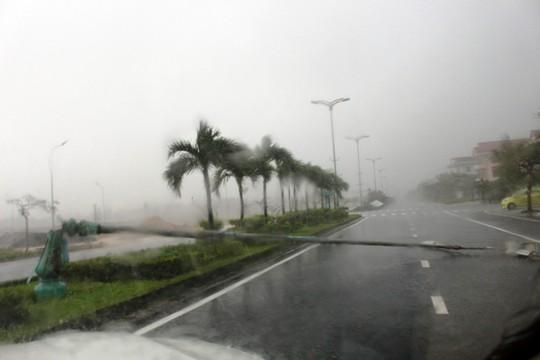 Phú Yên ách tắc, 6 người chết, mất tích vì bão số 12 - Ảnh 5.