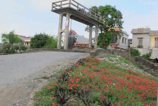 Ngỡ ngàng những con đường hoa rực rỡ làng quê miền Bắc - Ảnh 18.