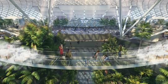 Sân bay Changi đưa thác nước, rừng nhân tạo vào nhà - Ảnh 11.