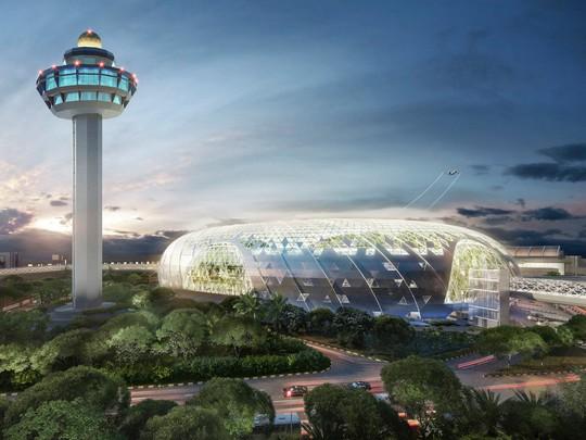 Sân bay Changi đưa thác nước, rừng nhân tạo vào nhà - Ảnh 1.