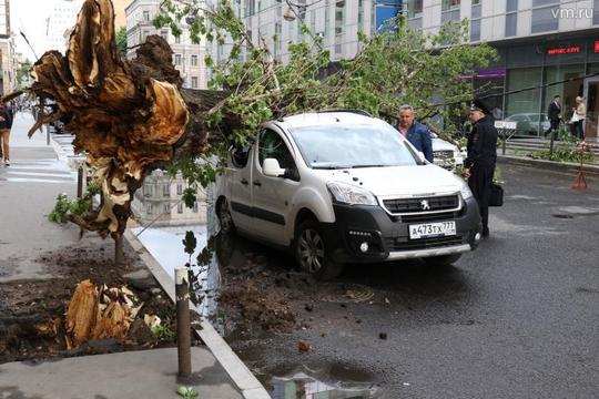 Bão mạnh tàn phá Moscow - Ảnh 1.