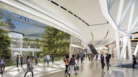 Sân bay Changi đưa thác nước, rừng nhân tạo vào nhà - Ảnh 4.