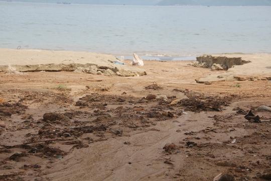 Công trình 40 móng biệt thự ở Sơn Trà đẩy bùn đất xuống biển - Ảnh 3.