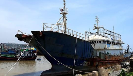 Bình Thuận: Bán đấu giá tàu ma trôi dạt trên biển - Ảnh 1.