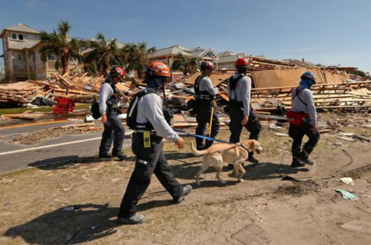 Mỹ: Bão Michael trút thiệt hại không thể tưởng tượng xuống Florida - Ảnh 5.