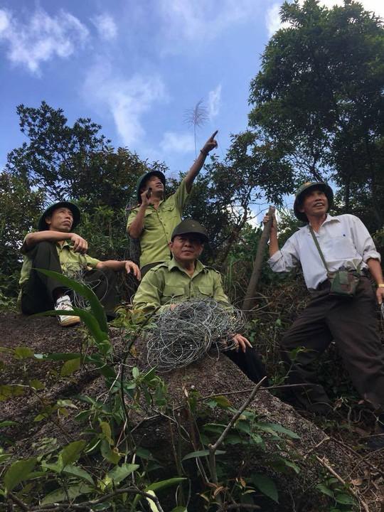 Phát hiện dày đặc hơn 300 bẫy tận diệt thú rừng trên núi - Ảnh 2.