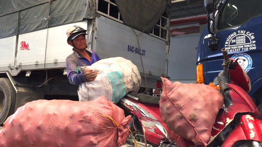 """Trung Quốc ngừng mua khoai lang, nông dân vẫn """"liều mình"""" xuống vụ mới - Ảnh 1."""
