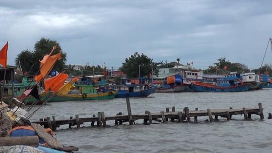 Dân biển Cần Giờ hốt cú chót trước khi tránh bão số 9 - Ảnh 13.