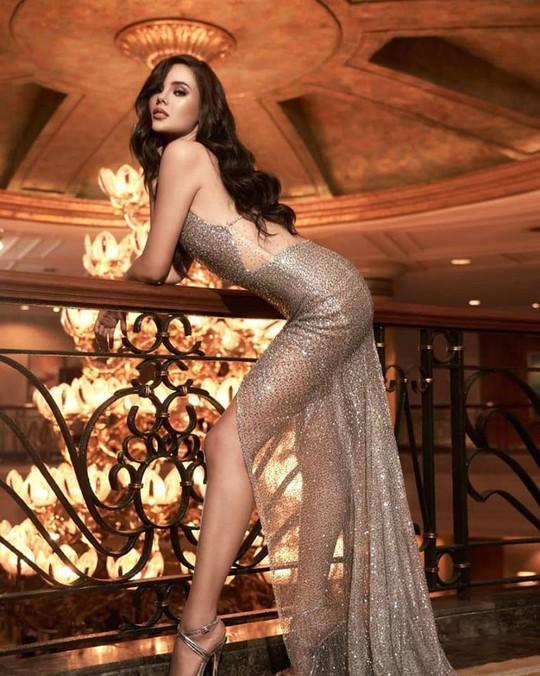 Cận cảnh nhan sắc tân Hoa hậu Hoàn vũ Thế giới - Ảnh 7.