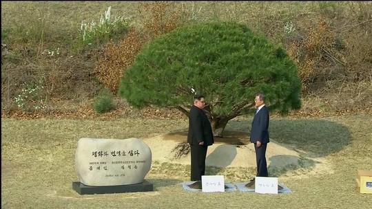 2018-04-27t074406z_1319099363_rc14da92d810_rtrmadp_3_northkorea-southkorea-summit