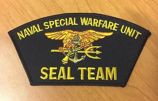 Dính bê bối tình dục, 2 chỉ huy SEAL bị bắt về nước lập tức - Ảnh 2.