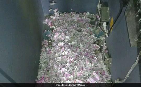 Chuột chui vào máy ATM, cắn nát cả đống tiền - Ảnh 1.