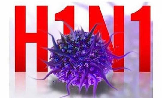 Độc lực cúm A/H1N1 không biến đổi, sao nhiều người tử vong? - Ảnh 1.