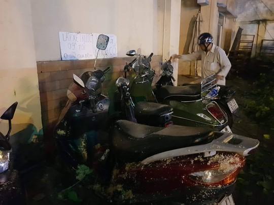 Cây xanh gãy đổ đè hàng loạt xe máy tại TP HCM - Ảnh 3.