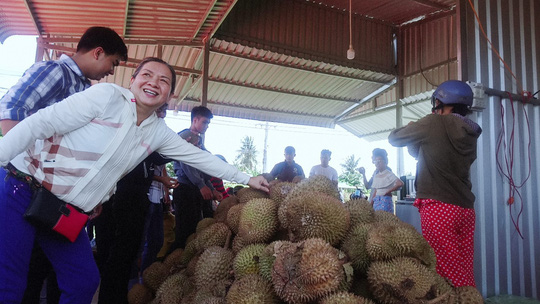 Lại ùn ùn kéo về Vĩnh Long ăn sầu riêng 19.000 đồng/kg - Ảnh 2.