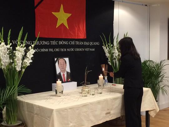Lãnh đạo nước ngoài đến Đại sứ quán viếng Chủ tịch nước Trần Đại Quang - Ảnh 2.