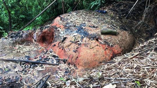 Vụ phá rừng ở Lâm Đồng: Sự thật có bị bẻ cong? - Ảnh 5.