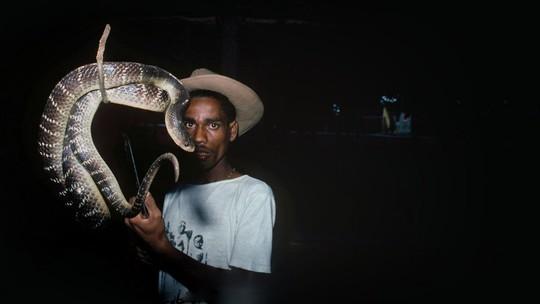 Bộ lạc người rắn - Ảnh 1.