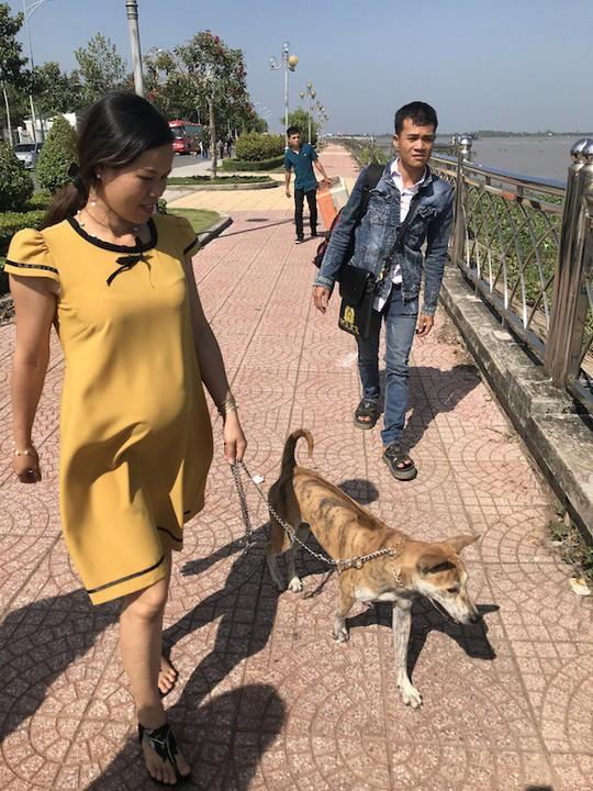 Ngắm dàn chó đắt tiền từ khắp nơi về miền Tây thi chó đẹp - Ảnh 16.
