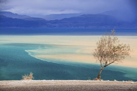 Những địa điểm du lịch nổi tiếng đang dần biến mất vì thay đổi khí hậu - ảnh 1