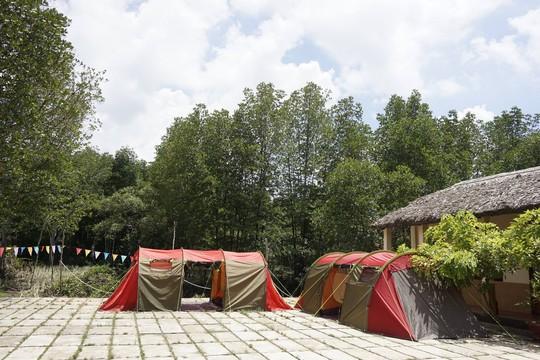 Điểm danh 4 khu sinh thái cực đẹp ngay gần Sài Gòn - Ảnh 13.
