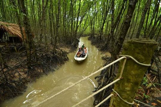 Điểm danh 4 khu sinh thái cực đẹp ngay gần Sài Gòn - Ảnh 14.