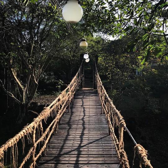 Điểm danh 4 khu sinh thái cực đẹp ngay gần Sài Gòn - Ảnh 10.