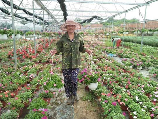 Chùm ảnh: Ngắm làng hoa Vân Dương vào mùa vụ Tết - Ảnh 2.