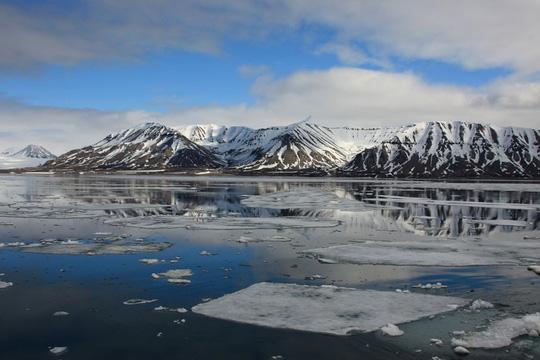 Phát hiện dấu vết siêu quái vật tí hon ở Bắc Cực - Ảnh 1.