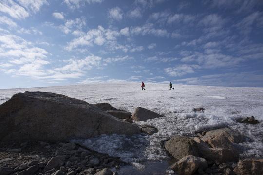Phát hiện dấu vết siêu quái vật tí hon ở Bắc Cực - Ảnh 2.