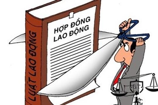 Chấm dứt hợp đồng lao động trái quy định - Ảnh 1.