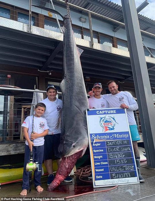 Cá mập 314 kg thất thủ trước bé trai 8 tuổi - Ảnh 2.