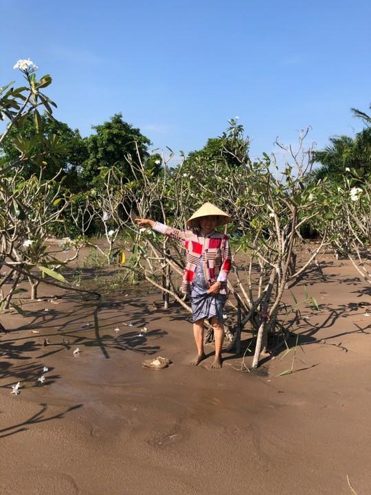 Phớt lờ lệnh của UBND tỉnh, doanh nghiệp ngang nhiên san lấp đất vườn của dân - Ảnh 1.